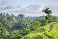 Bukit Campuhan Ubud Bali