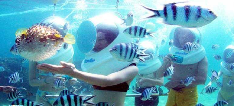 Tanjung Benoa Beach Underwater Bali
