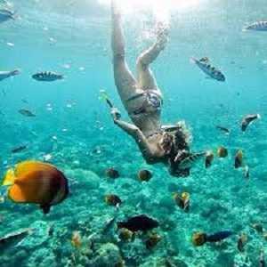Snorkeling di Pantai Crystal Bay Nusa Penida Bali
