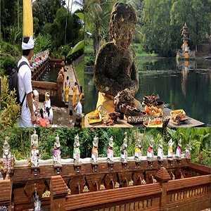 Taman Mumbul Sangeh Bali