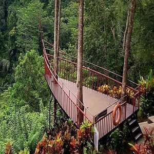 Lembah Tanah Wuk Bali