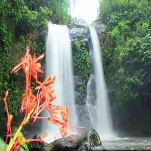 Air Terjun Juwuk Manis Tabanan Bali