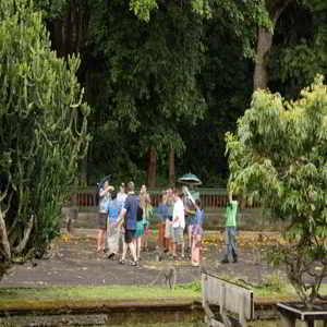 Objek Wisata Alas Kedaton Tabanan Bali