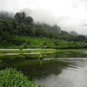 Taman Wisata Alam Danau Buyan Bedugul Bali