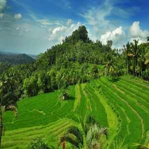 Desa Iseh Karangasem Bali