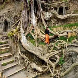 Munduk Asri Payangan Gianyar Bali