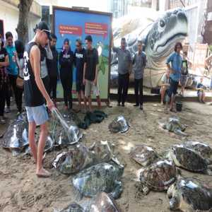 Turtle Conservation Education Centre Denpasar Bali