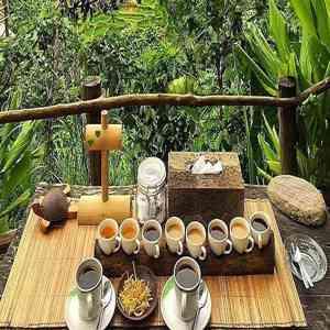 Bali Paulina Coffee Plantation