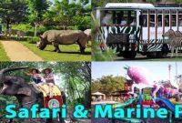 Bali Safari And Marine Park Gianyar