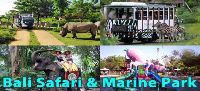 bali safari and marine park review wahana harga tiket masuk 2018 rh tempatwisatadibali info