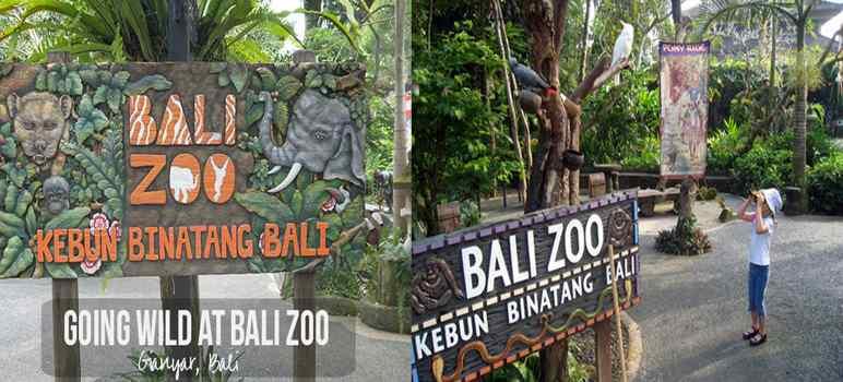 Bali Zoo Park Gianyar