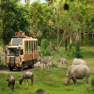 Kebun Binatang Bali Zoo Park Gianyar