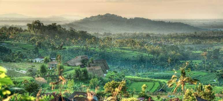 Desa Munduk Banjar Singaraja Buleleng Bali