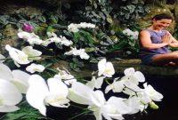 Bali Orchid Garden Denpasar
