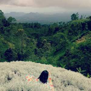 Padang Bunga Kasna Temukus Rendang Karangasem Bali