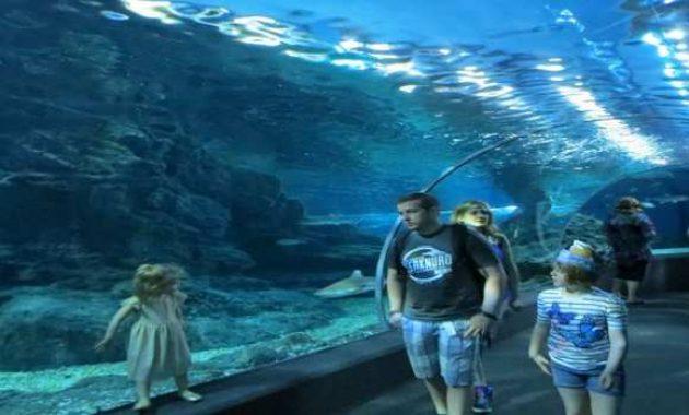 Seaworld Bali