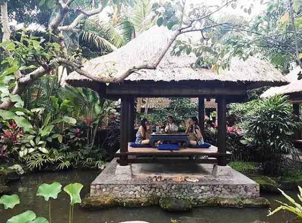 Bebek Tepi Sawah Ubud Bali