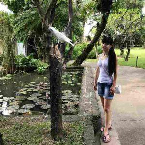 Bali Bird Walks Ubud Bali