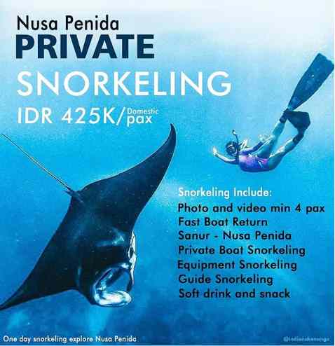Paket Snorkeling di Gamat Bay Nusa Penida Bali