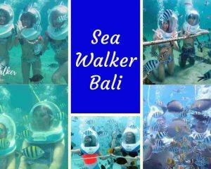 Gambar Foto Sea Walker Bali