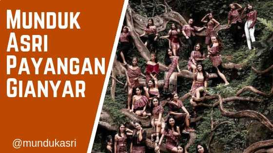 Munduk Asri Payangan Ubud Kabupaten Gianyar Bali