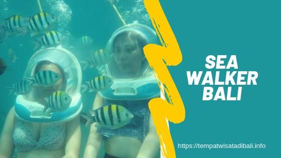 Sea Walker Bali Instagram