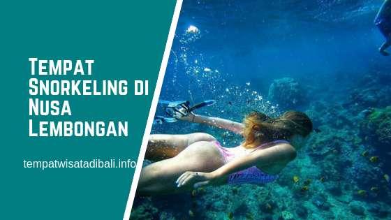 Tempat Snorkeling di Nusa Lembongan Bali