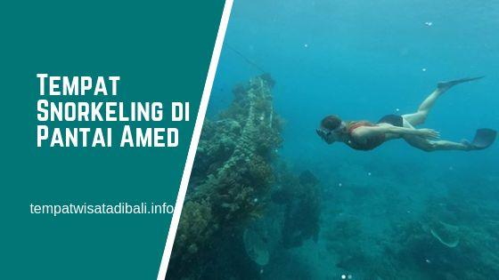 Tempat Snorkeling di Pantai Amed Bali