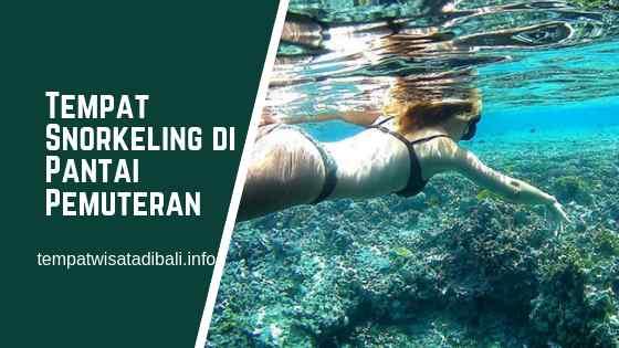 Tempat Snorkeling di Pantai Pemuteran Bali