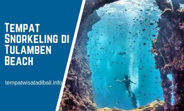 Tempat Snorkeling di Pantai Tulamben Bali