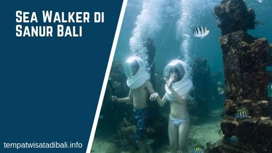 Tempat Snorkeling di Sanur Bali