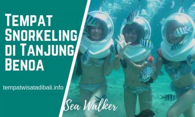 Tempat Snorkeling di Tanjung Benoa Bali