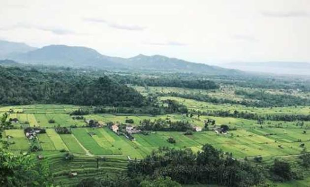 Pucak Jati Desa Timuhun Banjarangkan Klungkung Bali