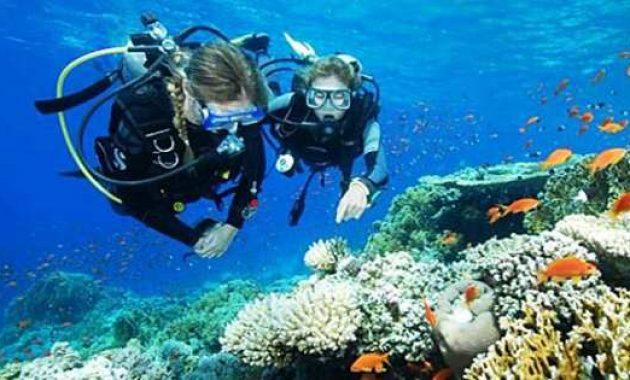 Menyelam yang bagus di Bali