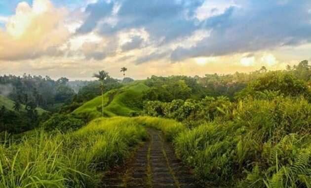 Campuhan Ridge Walk Ubud Bali Image Instagram