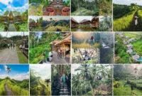 tempat_wisata_di_ubud_bali